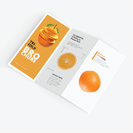 """8.5"""" x 11"""" Brochures (Flat Size)"""